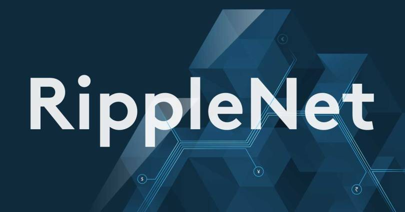 insights-ripplenet402x
